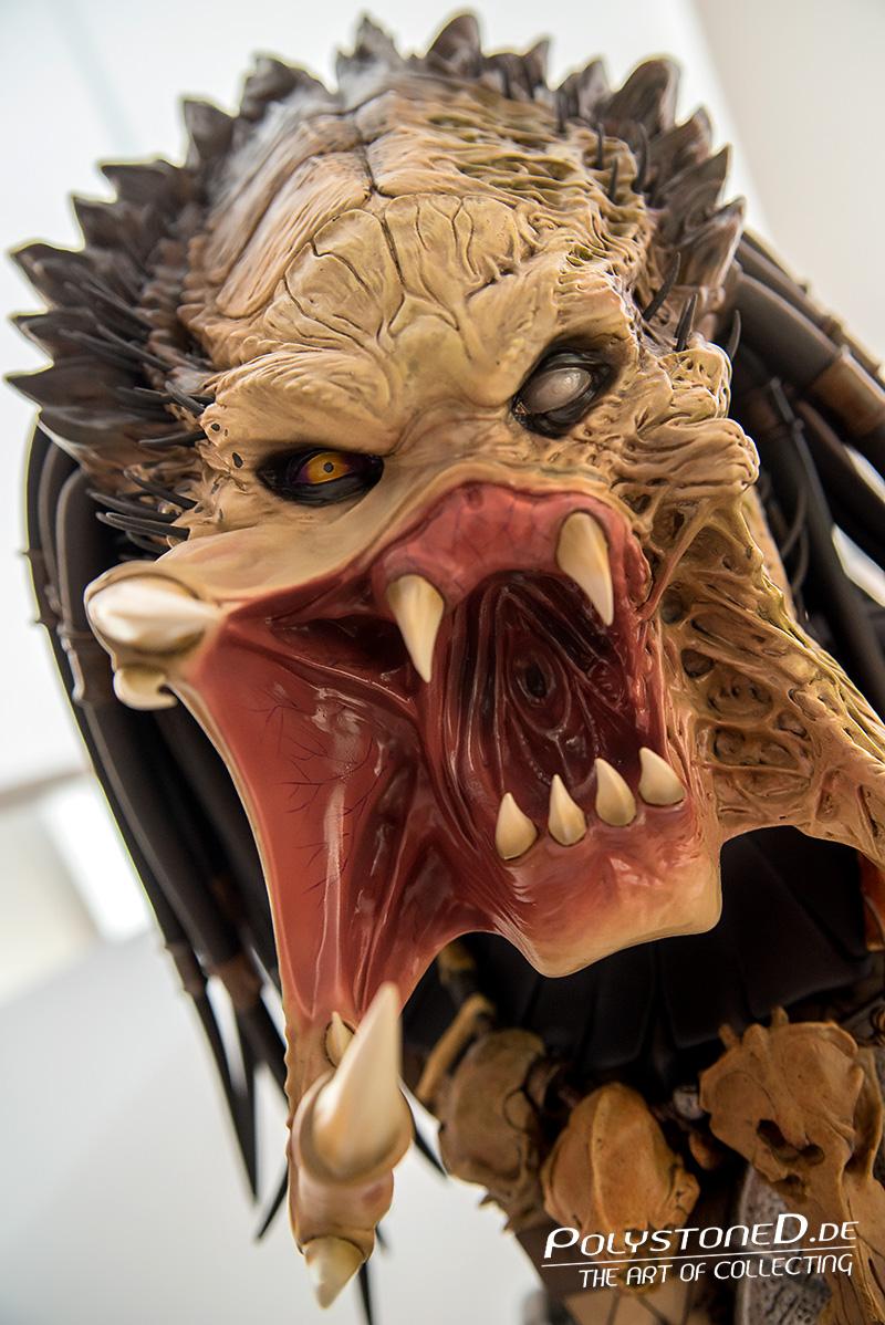 [Bild: sideshow-wolf-predator-lsb4.jpg]